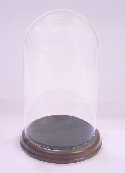 Glass Display Dome 17.6 cm Tall