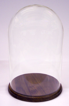 Glass Display Domes 25.5 cm Tall