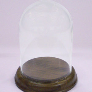 Glass Display Dome 10.5 cm Tall